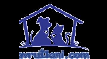 Bursa Satılık Yavru Köpek İlanı