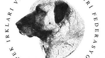 Köpeklerde Secere Nedir